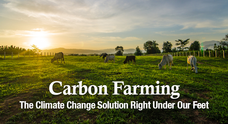 Carbon farming: The Climate Change Solution right under our feet